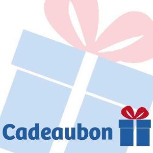 Afbeelding van Cadeau bon 25 EURO